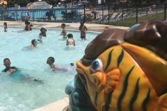 Hot summer, cool water!